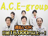 株式会社A.C.E group