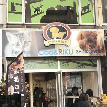 Coo&RIKU(クーアンドリク) 新小岩店