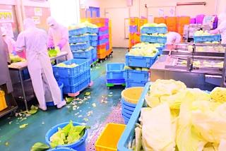 わかば食品株式会社 熊本工場