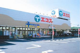 エコスTAIRAYA久米川八坂店