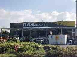ロイヤルホームセンター 湘南大磯店