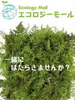 エコロジーモール