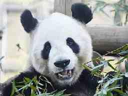公益財団法人 東京動物園協会
