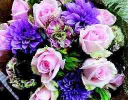 花やしき 春日園