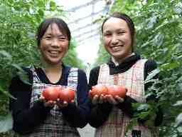 トマトグロアーなかむら