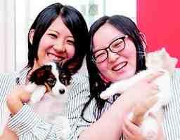 株式会社犬の家 岐阜パピーセンター