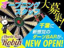 Darts Bar Robin