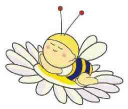 株式会社 Baby-bee