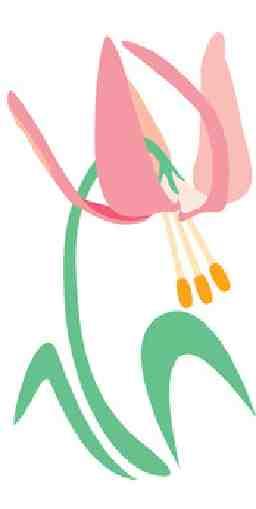 ALSOKあんしんケアサポート かたくり福祉用具神奈川・多摩センター