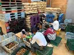 農事組合法人船橋農産物供給センター