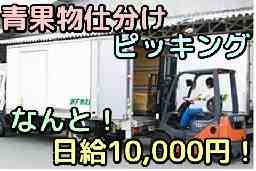 (株)ケイ・エフ物流<藤本物産グループ>