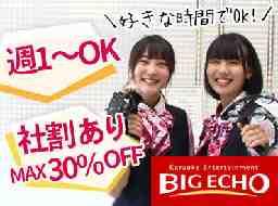 ビッグエコー 澄川駅前店