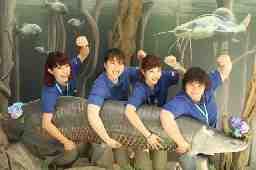 世界淡水魚園水族館「アクア・トトぎふ」 (文教スタヂオ)