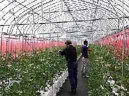 JA全農いしかわ 園芸種苗センター