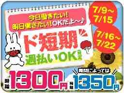 パーソルマーケティング株式会社 仕事NoF2190703