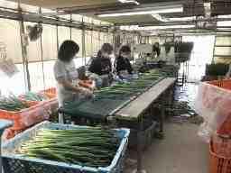 株式会社渋谷農園