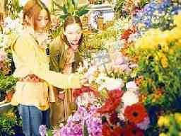 フラワーマーケット花市場