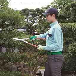 ダスキン 龍田トータルグリーン