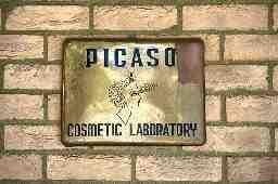 株式会社ピカソ美化学研究所