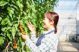 農業生産法人株式会社井出トマト農園