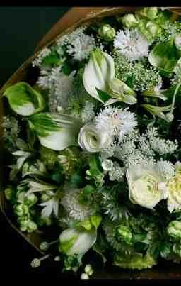 秦野市の花屋FLORIST SEKIDO