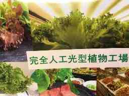 司ゴム電材株式会社植物工場