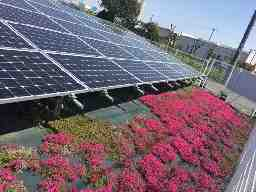 日本太陽光発電株式会社