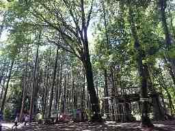 けやの森自然塾