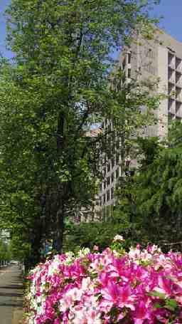国立大学法人名古屋大学 地域在宅医療学・老年科学