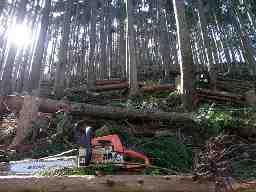Mt.works HORIUCHI RINGYO 堀内林業