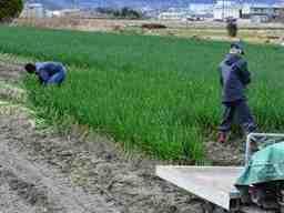 増田農業株式会社