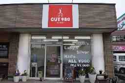 Hair Salon CUT980