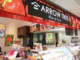 ARROW TREE(アローツリー) Whityうめだ店