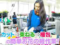 株式会社ハップ 大阪営業所(ヒカリグループ)