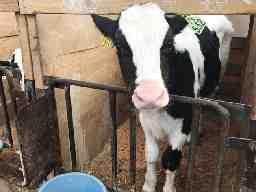広野肉牛生産組合