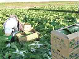 いわみざわ農業協同組合 農業振興部門