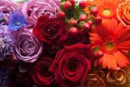 bloom produce MISAKI