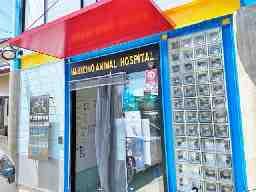 羽曳野動物病院