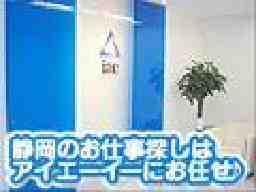 株式会社アイエーイー/2240/