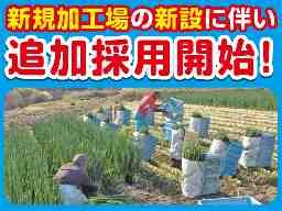 増田農業株式会社 かつらぎセンター