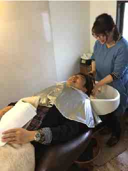 hair healing salon az luxury