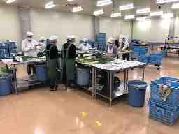 JAおきなわ南部地区営農振興センターパッキングセンター