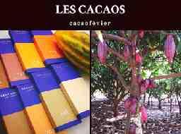 Les cacaos