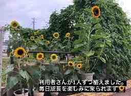 ニチイケアセンターウッディタウン(神戸支店)