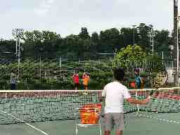 テニスチーム リベラル