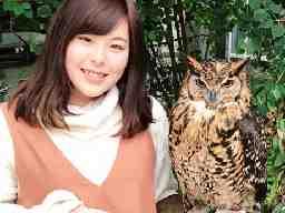 家庭教師のポケット:兵庫県神戸市中央区ポートアイランド・神戸空港周辺