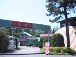 株式会社日野 ホテルエリーゼ8