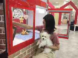ペットサロン&犬の美容室 TOMBOW