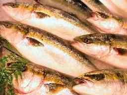 三重県漁業協同組合連合会 三浦活魚流通センター